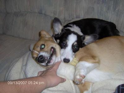 Max & Elsie