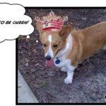 Princess Elizabeth Anne II