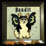 Contest Winner Bandit — A Very Special Portrait