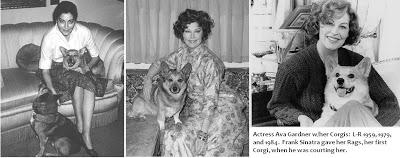 Actress Ava Gardner:  Owned by Corgis!