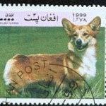 Postage Stamp Corgis