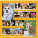 2011 Daily Corgi Calendar Preview — March!