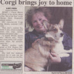 Brodie, Oneida County Pet of the Year!