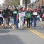 Corgi Corps in the Middleburg XMAS Parade!
