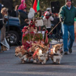 Move over, Donner and Blitzen …