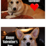 No bones about it, Valentine …