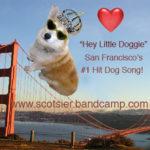 Miles, the San Fran Corgi who inspired a hit song!