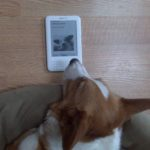 Kindle Cam:  Chief catches up on The Daily Corgi!