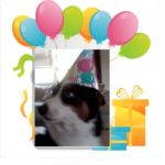 Birthday Cam:  Brody C.!