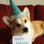 Happy Birthday (to me)!