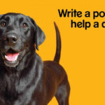 BlogPaws, blog hop … and helping homeless dogs!!