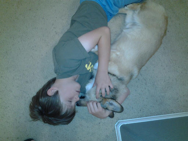 A Boy and His Corgi: Mike and Packer