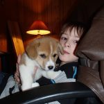 Kids n' Corgis: Finnigan Wigglesworth Bush!
