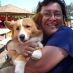 Corgi Love: Geri, Sidney and Connie!