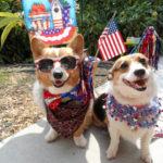 Happy July 4th, U.S.A.!