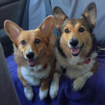 Saturday Smilers: Max and Rosie!