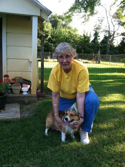 Thursday Adoptables: Kansas Puppy Palooza!