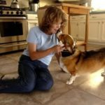Denby Dog: Changing Hearts, Opening Minds