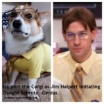 Sunday Funnies: Corgis in Costumes — Pop Culture Edition!
