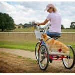 Tricycle Built for Two: Waylon and Virginia