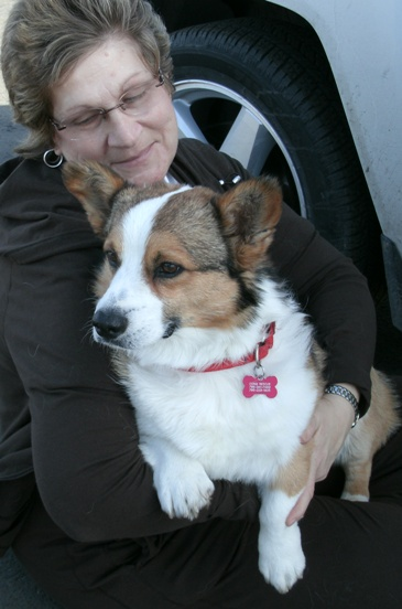 Profiles In Caring: Corgi Connection of Kansas