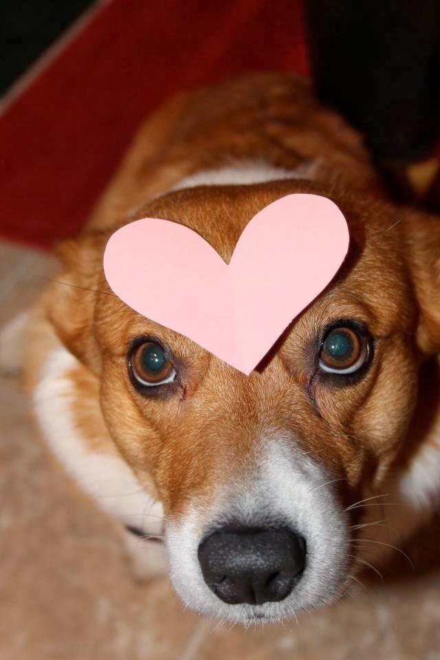 My #Corgi Valentine, Sweet Comic Valentine