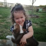 Kids n' #Corgis Cam: Aspen and Peppa!