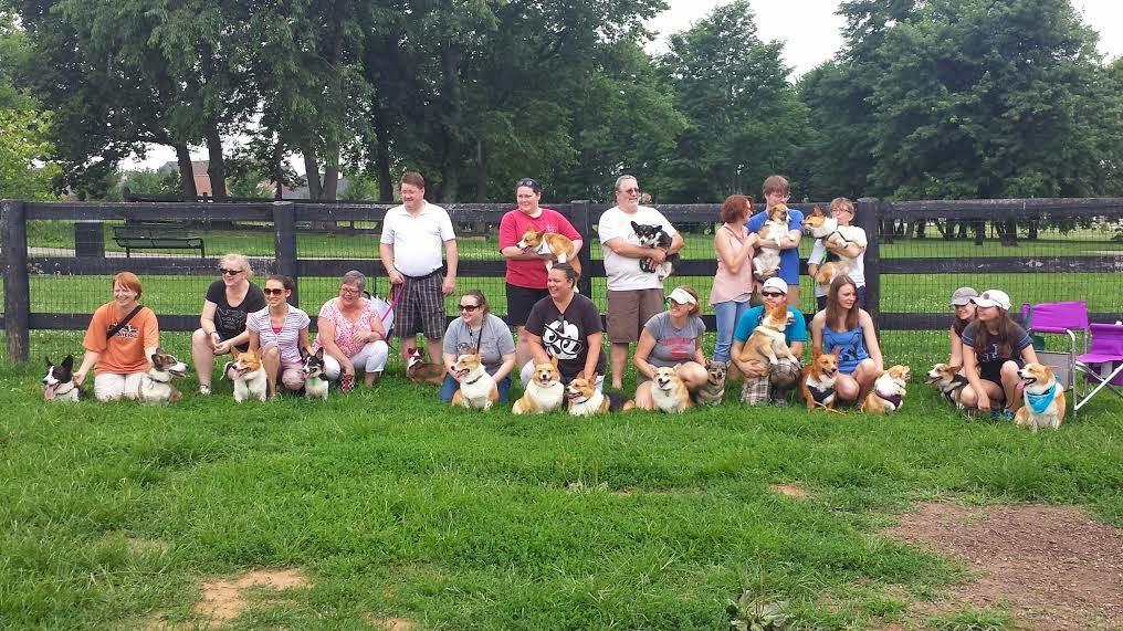 The First Ever Kentucky #Corgi Meet-Up Wrap Up!