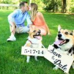 A Very #Corgi Wedding Week: Danielle and Eric!