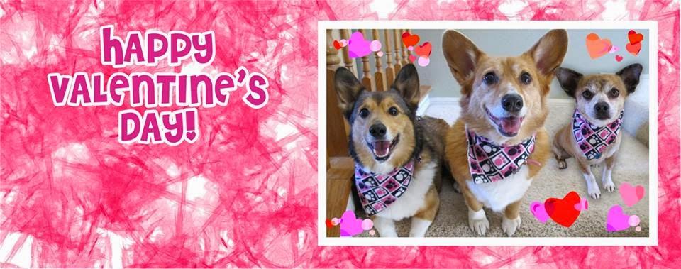 It's A Very #Corgi Valentine's Day!