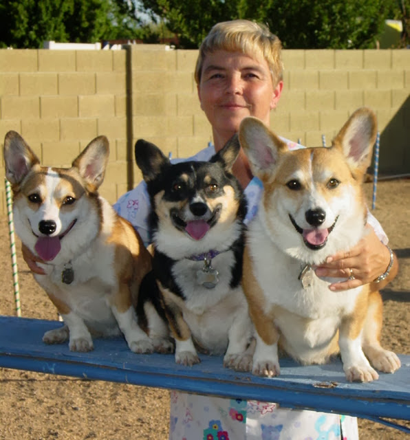 Weighty Matters: The Skinny on Fat #Corgis