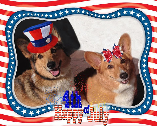 I want YOUR 4th of July #Corgi Photos!