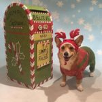 #Corgis and Reindeer and Elves, Oh MY!