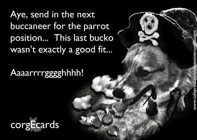 Pirates of the #Corgi-bein'!
