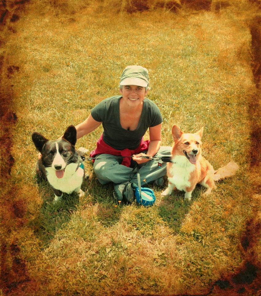 Sir Pippin and Lu visited Zoe in Pennsylvania on their journey from Alaska to New York's Adirondack Mountains. Corgi Power across state lines? You bet!