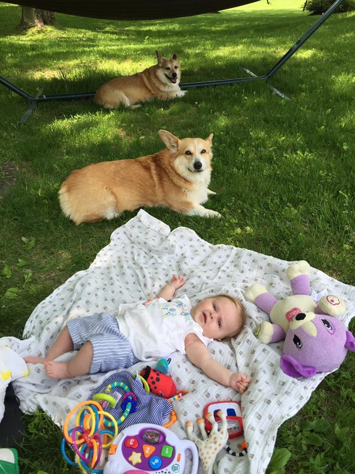 picnickyyyy