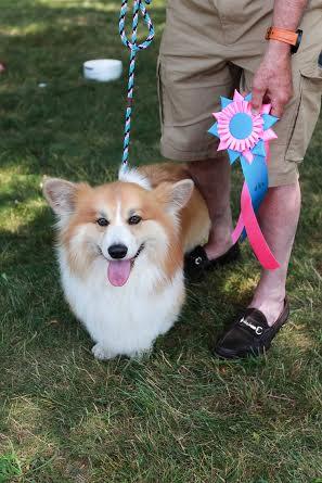 Winner of Best Fluffy