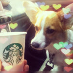 Monday Funnies: Corgis + Coffee!