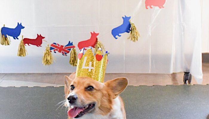 Cersei's Great Big British Birthday Bash!