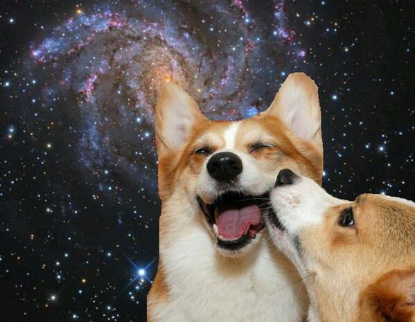 Momos In The Milky Way 18 Epic Space Corgis The Daily Corgi