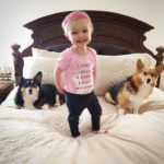 Better Living Through Corgis: Daisy and Lilly