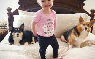 Better Living Through Corgis: Daisy and Lilly