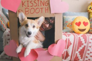 Wordless Wednesday: 9 Unforgettable Corgi Kissing Booths!