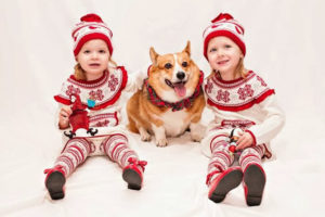 C is for Christmas, Corgis and An Elfish Crew of Two!