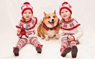 C is for Christmas, Corgis and An Elfish Crew of Two!
