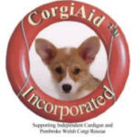 CorgiAid Auction