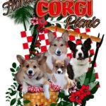 Recap:  2009 Florida Corgi Picnic