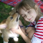 Corgi kisses are the best.