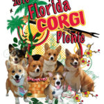 2010 Florida Corgi Picnic!