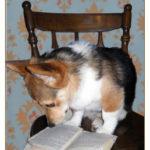 Book Club Cam:  Penny!